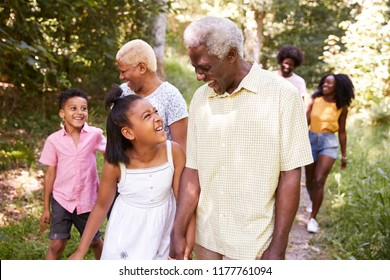 Multi generation black family walking in forest, close up