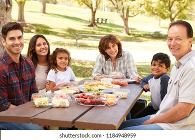 Multi generation family picnicking in park smile to camera