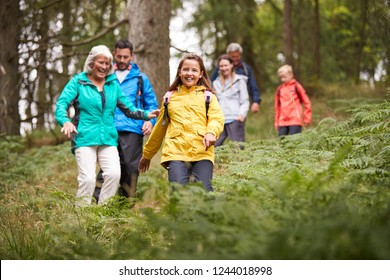 Multi generation family walking downhill on a trail in a forest during a camping holiday, Lake District, UK