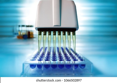 Multichannel pipette loading samples in pcr microplate with 96 wells / Multi channel pipette loading biological samples in microplate for test in the laboratory