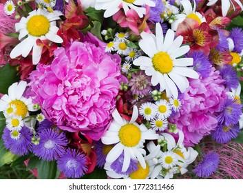mehrfarbiger Bouquet mit Asterern, Pfingstrosen, Gänseblümchen, Hintergrund