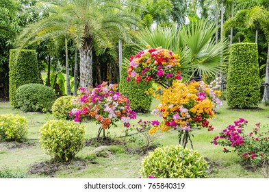 Multi-color of flowers in public garden.