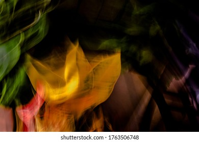 Multicolor, surreal, psychedelic, warm, hazy, color-blended plant / garden / grow-room scene - abstract motion-blurred background / texture