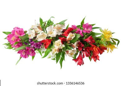 Multicolored alstroemeria flowers branch on white background isolated closeup, lily flowers bunch for decorative border, holiday poster, design element for greeting card, floral pattern, beauty banner