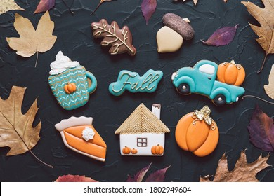 Multicolored autumn cookies on a black background. Autumn concept