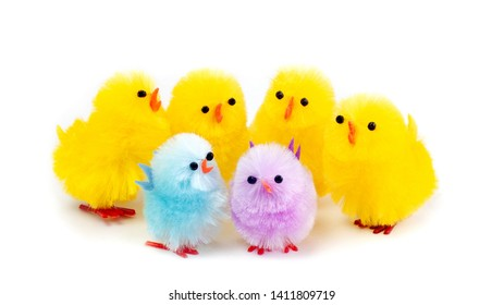 Multicolored easter chicks on white background in horizontal format.  Family or friends fun and playful concept.