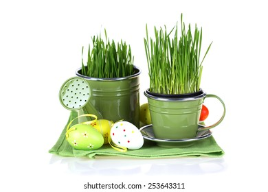 Multicolored easter eggs and grass in pots isolated on white background