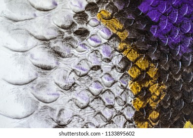 Multicolored faux leather snake Python texture for background. Close up