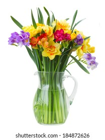 multicolored  freesia and daffodil  flowers in vase   isolated on white background