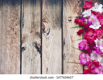 Multicolored gladioli on a wooden background. frame on top. Postcard concept. Place for your text.