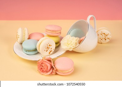 Multicolored macaroons cake are placed in a saucer and a cup along with buds of a carnation and roses on a yellow and pink background. Copy space. Bakery, cooking, gifts, conceptual and advertising.