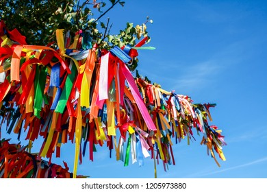 Multicolored ribbons on the branches of a tree against the sky