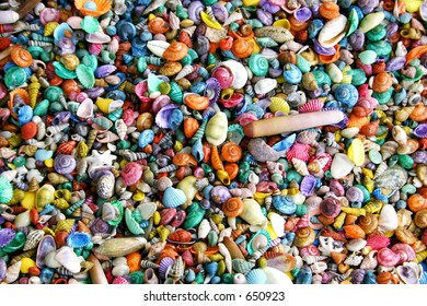 Multi-colored seashell background