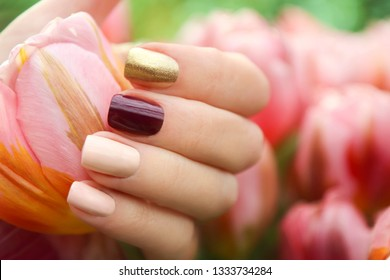 Multicolored short manicure with a brilliant golden, dark burgundy and pastel light nail polish. Nail art summer spring collection.