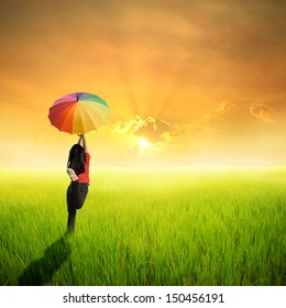 Multicolored umbrella woman jumping in green rice field and sunset