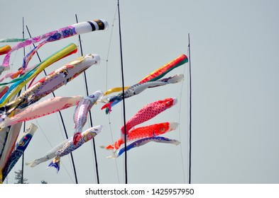 Multi-colour kites in the shape of Japanese carp have been tied to poles in celebration of Children's Day. They are floating in the wind against a clear sky.