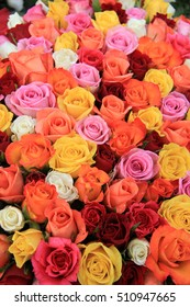 Multicored wedding roses: a mix of orange, red, pink and white