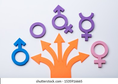 Multiple Arrows Pointing To Gender Signs. Free Gender Choice Concept