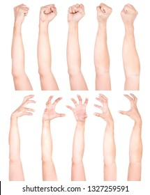 Multiple Male Caucasian hand gestures isolated over the white background, set of multiple images.Man Hand Collection.