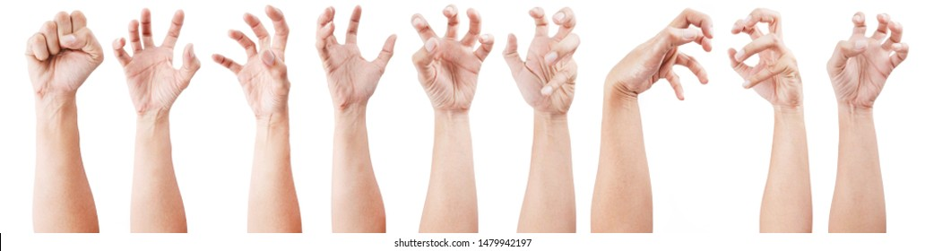 Multiple Man hand gestures isolated over the white background, set of multiple images. Zombie Hands.