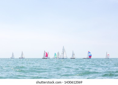 Multiple sailboats sailing on the ocean on a sunny day