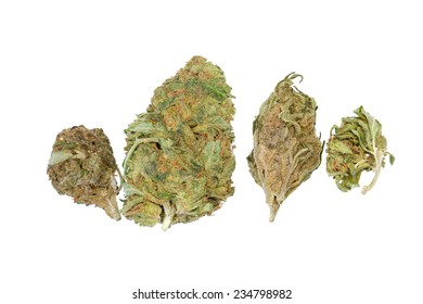 Multiple strands of cannabis isolated on white