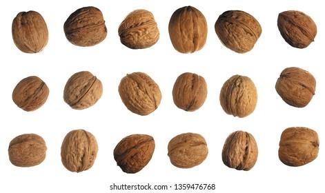 multiple walnuts on white background