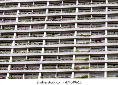 Multiple windows pattern on a  building with flowers