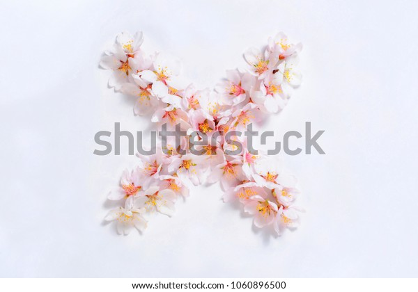 Multiplication sign lined pink flowers on a white background