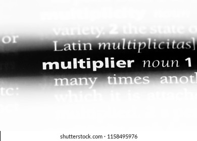 multiplier word in a dictionary. multiplier concept.
