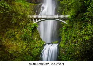 Multnomah Falls and bridge, in the Columbia River Gorge, Oregon.