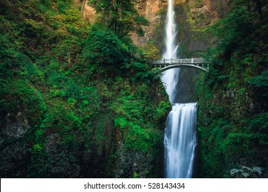 Multnomah Falls Bridge, Columbia River Gorge, Oregon