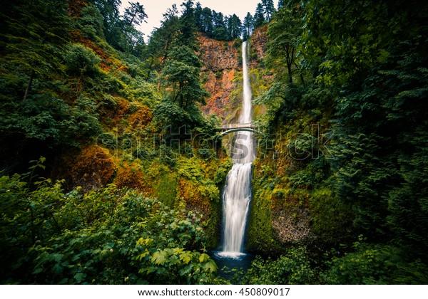 Multnomah Falls in Summer.  Columbia River Gorge, Oregon, USA