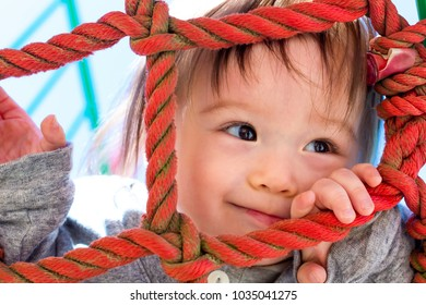 Multracial toddler boy climbing on a playground ropes