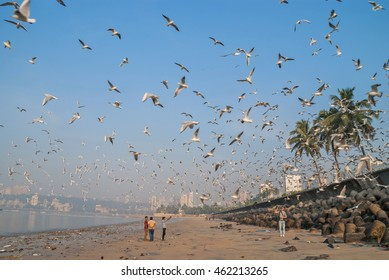 MUMBAI, INDIA - 14 JANUARY 2016: marine Drive