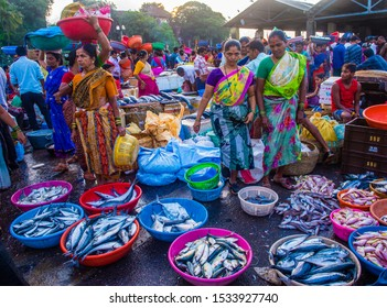 MUMBAI , INDIA - AUG 26 : Indian people working in Sassoon Docks in Mumbai India on August 26 2019 Sassoon Docks is the largest fish market in Mumbai