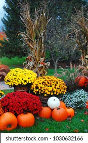 Mums, pumpkins and corn stalks complete an autumn decoration in New England