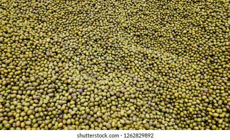 Lot of mung beans background. Big heap of green mung beans in supermarket. Close up pile dry legumes organic farm. Mung bean (Vigna radiata) also known as moong bean, monggo,  green gram, or mung
