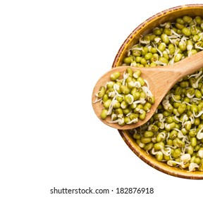 Mung beans sprouts in wooden spoon and bowl with mung beans sprouts isolated on white