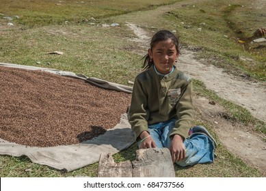 At Mungji settlement, near Manang village, on Around Annapurna trek-October 3, 2008: A beautiful young Nepali girl with a light wind sweeping over her tanned face and hair, Nepal Himalayas, Nepal