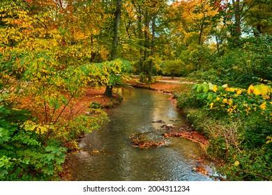Munich English garden Englischer garten park. Autumn colours on trees and leaves and flowing river. Munchen, Bavaria, Germany - Shutterstock ID 2004311234