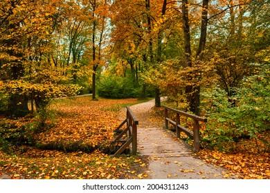 Munich English garden Englischer garten park. Autumn colours on trees and leaves and old wooden bridge over stream. Munchen, Bavaria, Germany - Shutterstock ID 2004311243