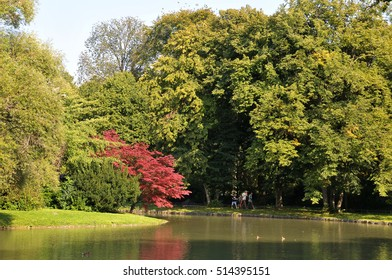 MUNICH, GERMANY - AUGUST 17, 2011: Small pond, surrounded by trees, in the English garden