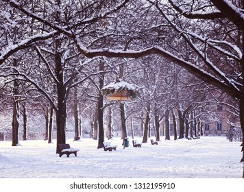 Munich, Germany - winter view of  Hofgarten Renaissance park covered by snow in city center with a birdhouse hanging from a tree branch