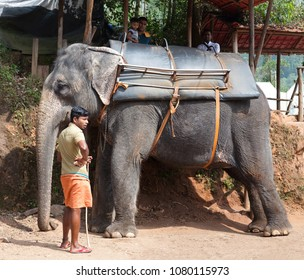 MUNNAR, INDIA - NOVEMBER 9, 2016: Tourists on an elefant riding around the park in Kerala state