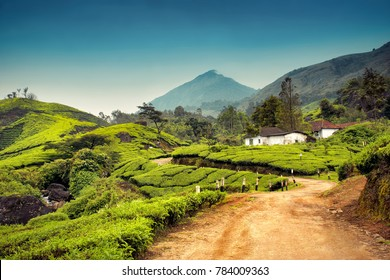 Munnar, Kerala, India - October 12, 2007 : Beautiful landscape of a road passing a village and tree plantations near Munnar
