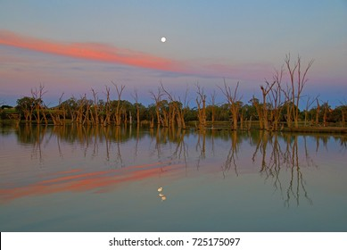 Murray river at Mildura Victoria Australia at dusk with moon rising.