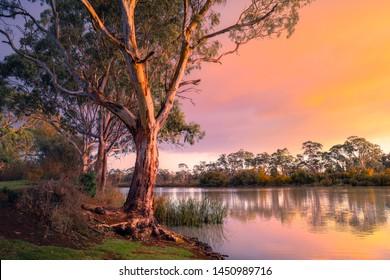 Murray River in South Australia