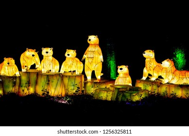 MURRELLS INLET, SOUTH CAROLINA, USA; JULY 4, 2018; A Festival of Lights Otter display during a Summer evening at the Brookgreen Gardens just outside of Myrtle Beach, South Carolina in Murrells Inlet.