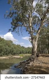 Murrumbidgee river at Darlington Point ,Australia